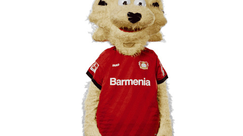 Bayer 04 Thinking GIF by Bayer 04 Leverkusen - Find & Share on GIPHY