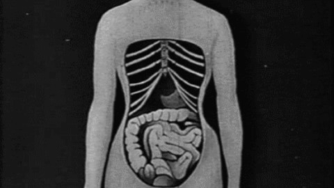 Black And White Body GIF - Find & Share on GIPHY